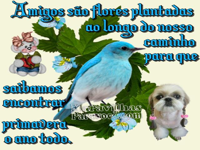 Amigos Sc3a3o Flores X2